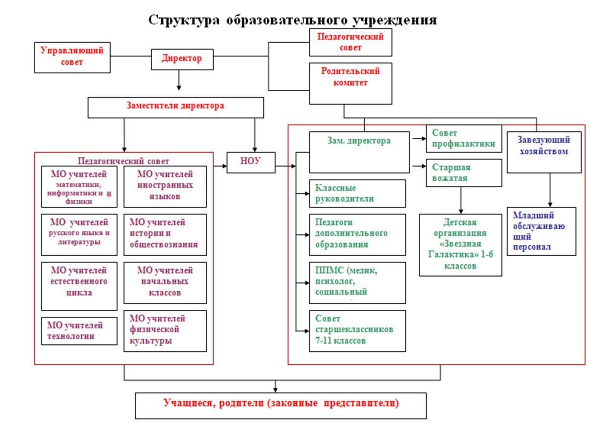 Структура учреждения дополнительного образования схема